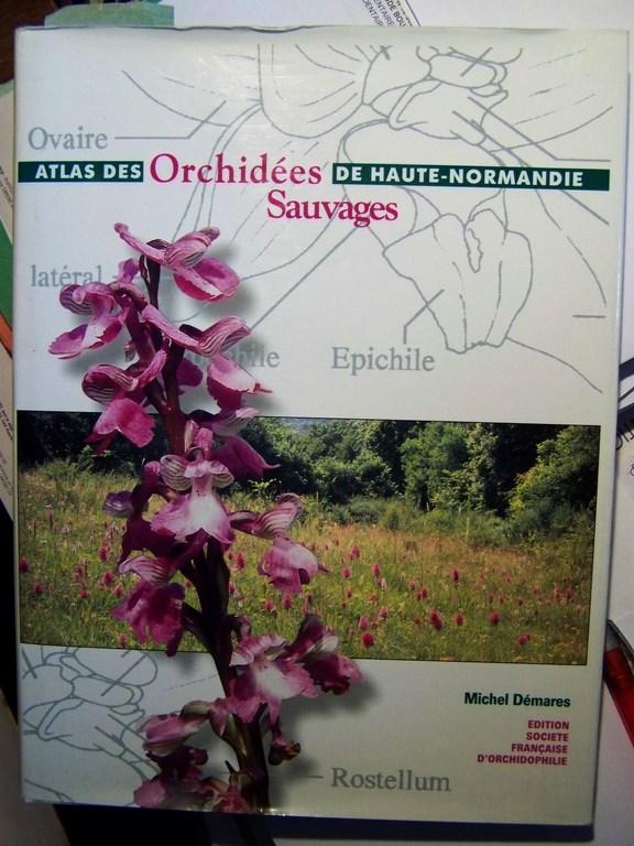 orchid%C3%A9es_atlas%20(Copier)
